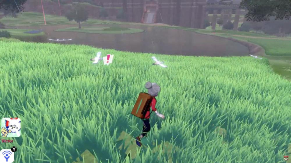 Pokémon Spada e Scudo erba alta